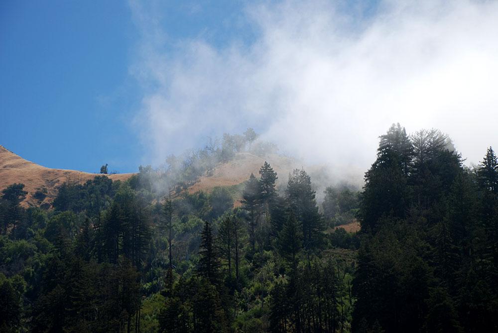 Niebla en la Costa de California