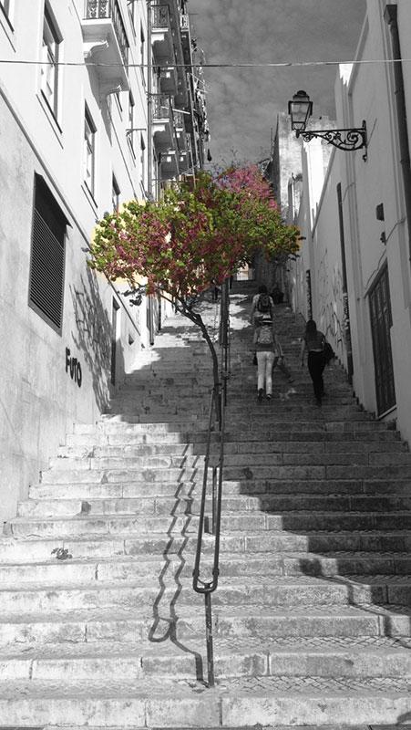 Escaleras de Lisboa
