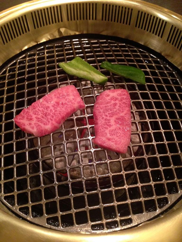 carne de hida