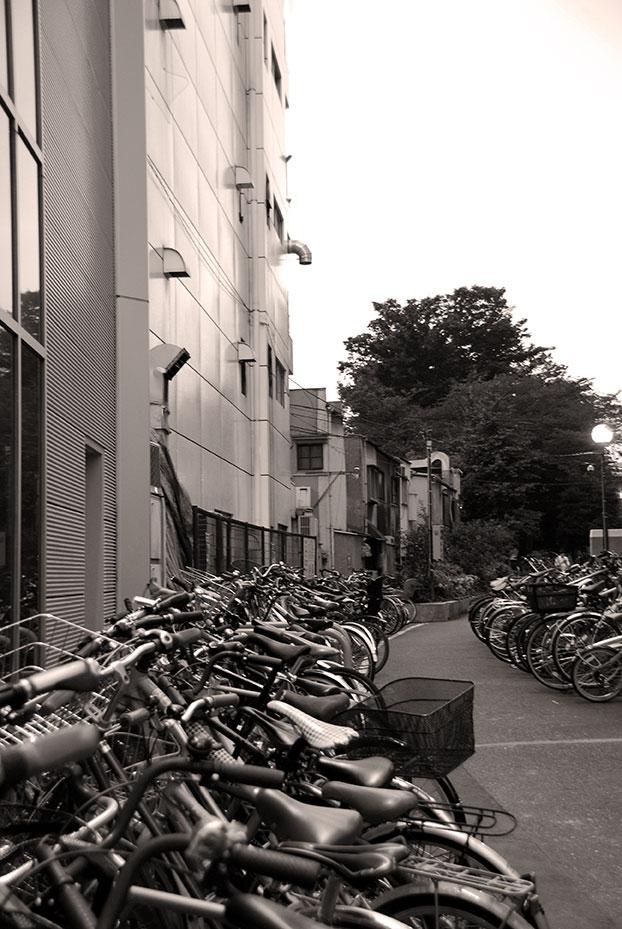 bicis en Tokio