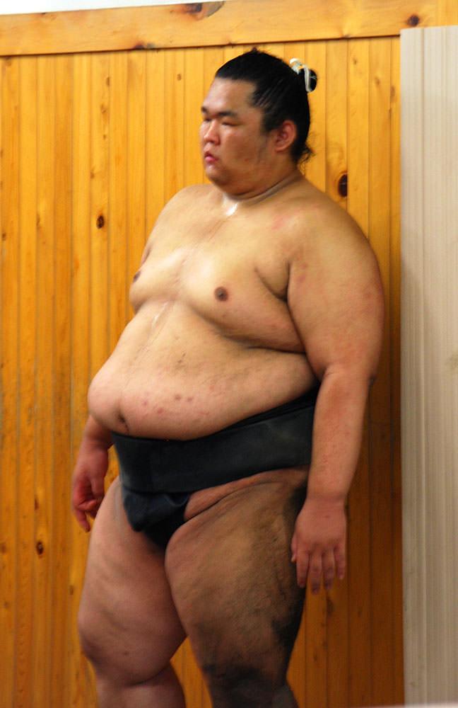 luchador de sumo tokyo