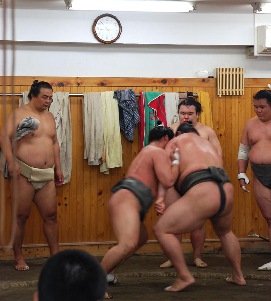 luchadores de sumo tokyo