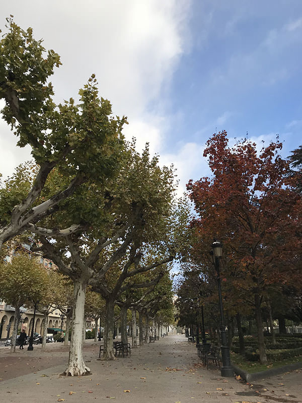 logroño otoño