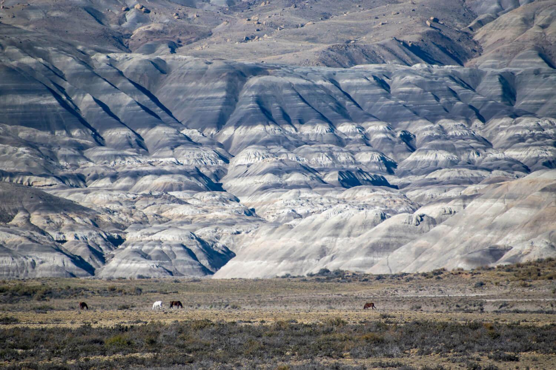 paisaje patagonia