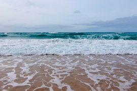 portada playas de fuerteventura